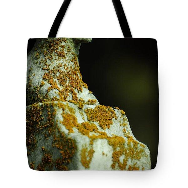 Soundless Sleep the Meek Tote Bag by Rebecca Sherman