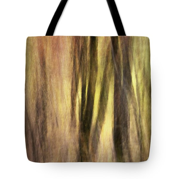 Sourwoods in Autumn Abstract Tote Bag by Rob Travis