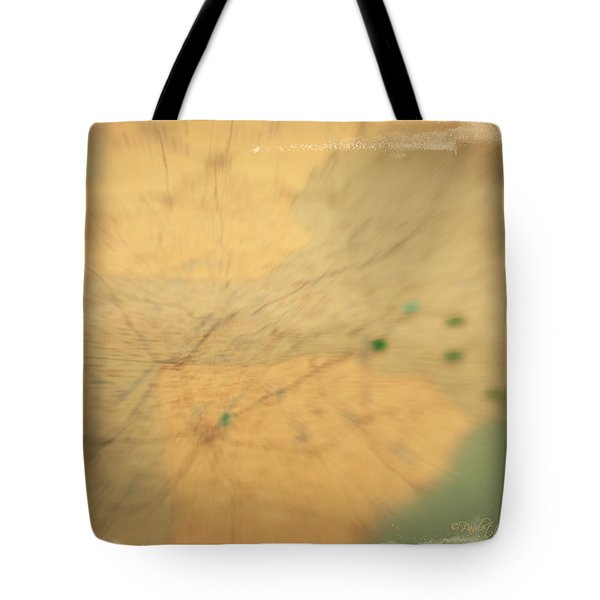 Southeast Us Tote Bag by Paulette B Wright