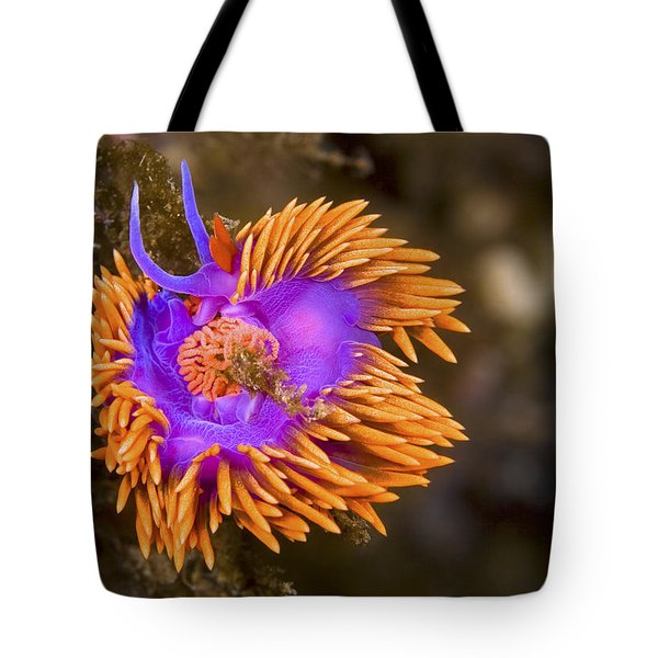 Spanish Shawl Tote Bag by Mike Raabe