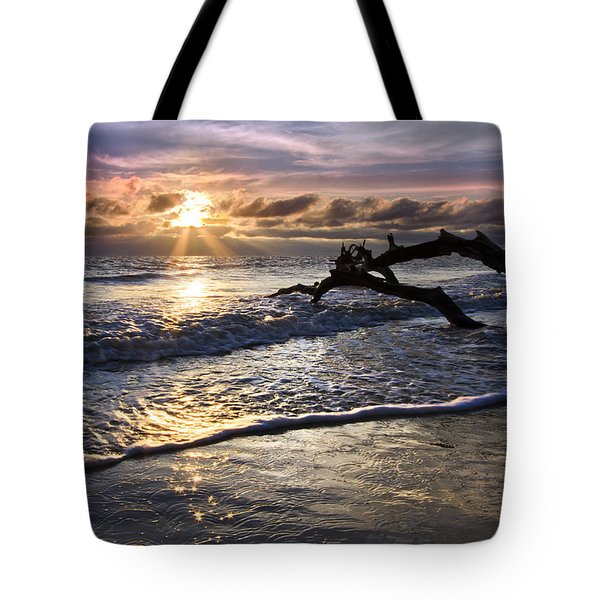 Sparkly Water At Driftwood Beach Tote Bag by Debra and Dave Vanderlaan