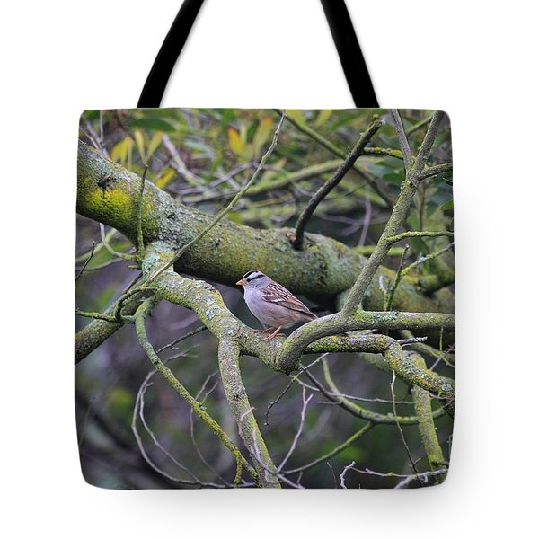 Sparrow Bird Perched . 40D12307 Tote Bag by Wingsdomain Art and Photography