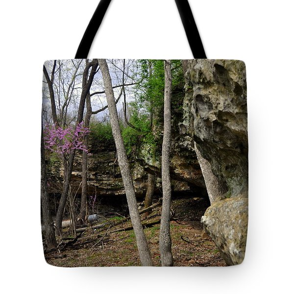 Spingtime Tote Bag by Marty Koch