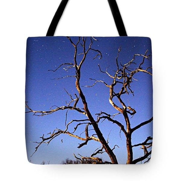 Spooky Tree Tote Bag by Larry Ricker