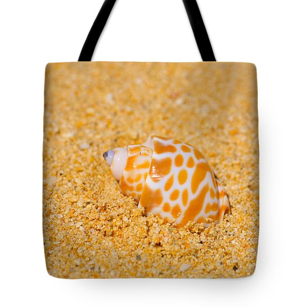 Spotted Babylon Shell Tote Bag by Cheryl Young