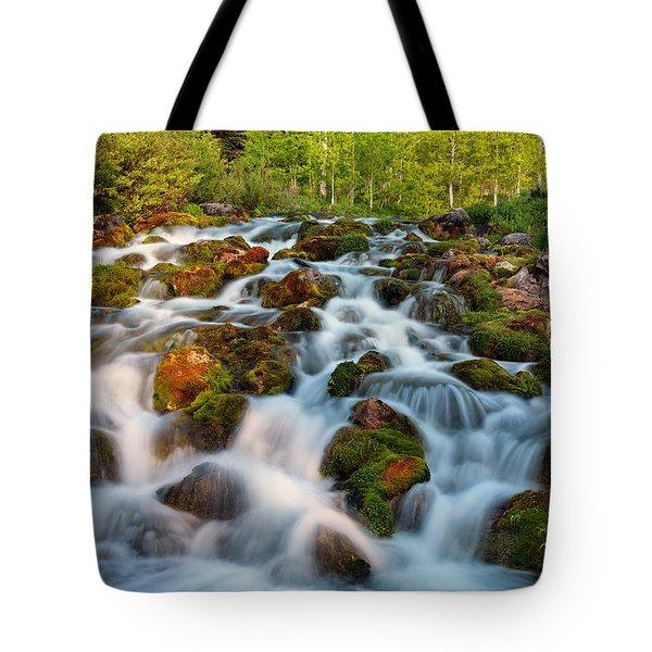 Spring Cascade Tote Bag by Leland D Howard