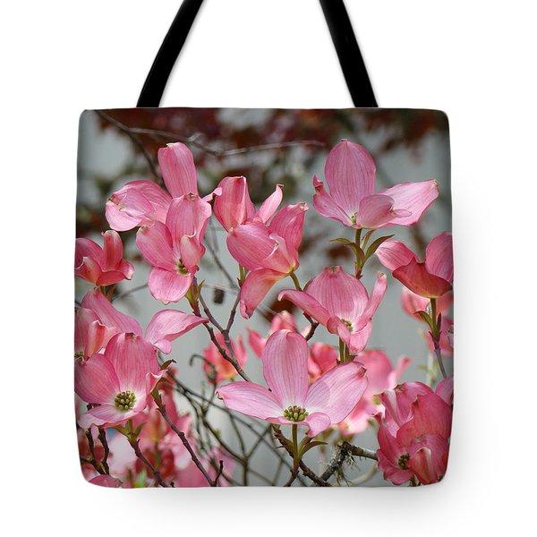 Spring Dogwood Tree Flowers art prints Pink Flowering Tree Tote Bag by Baslee Troutman