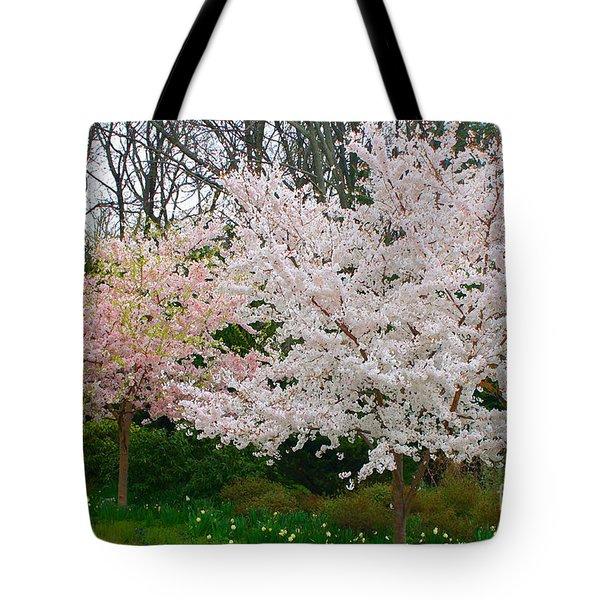 Spring Flowering Trees Tote Bag by Anahi DeCanio