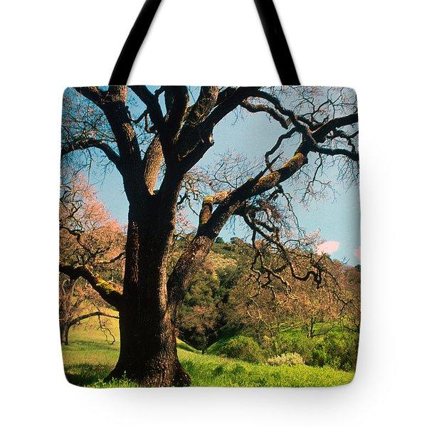 Spring Oak Tote Bag by Kathy Yates