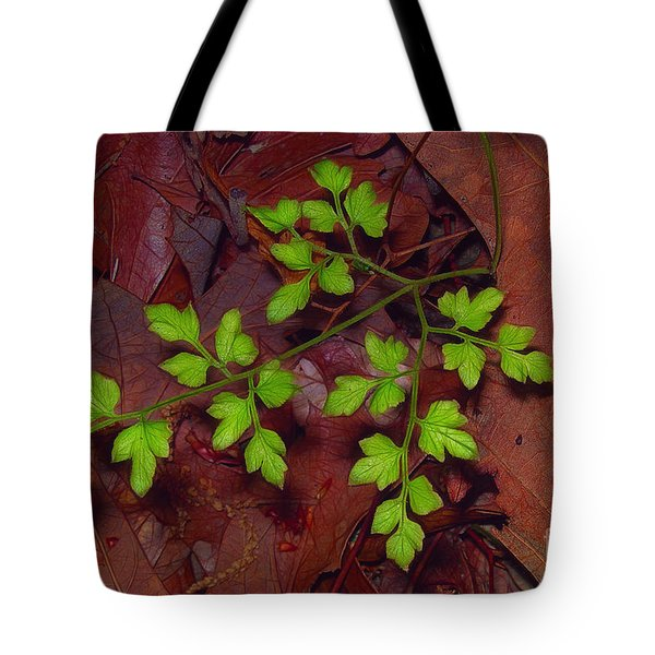 Spring Will Come Tote Bag by Judi Bagwell