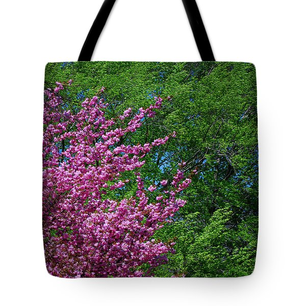 Springtime Tote Bag by Lisa Phillips