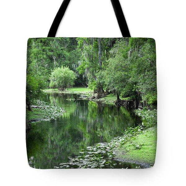 Springtime On The Lake Tote Bag by Carolyn Marshall