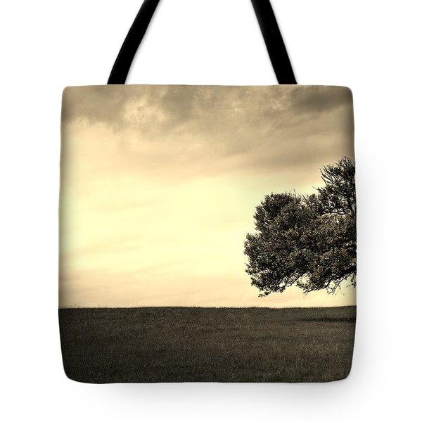 Stand Alone Tree 1 Tote Bag by Sumit Mehndiratta