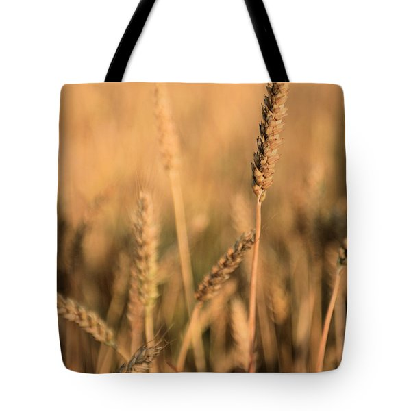 Standing Out in a Crowd Tote Bag by JC Findley