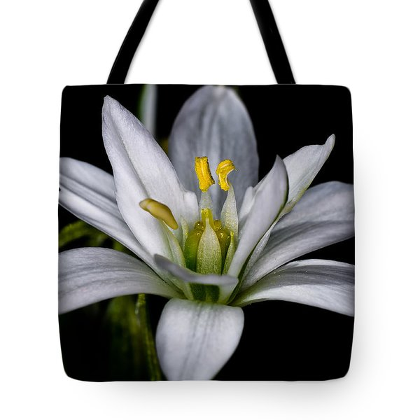 Star Of Bethlehem Tote Bag by Lori Coleman