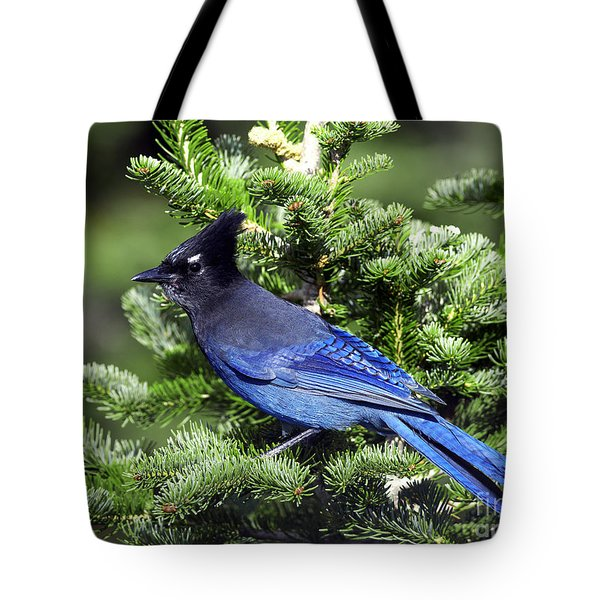 Stellers Jay Tote Bag by Sharon Talson