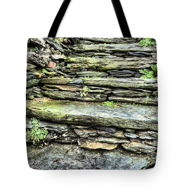 Stepping Through History Tote Bag by JC Findley