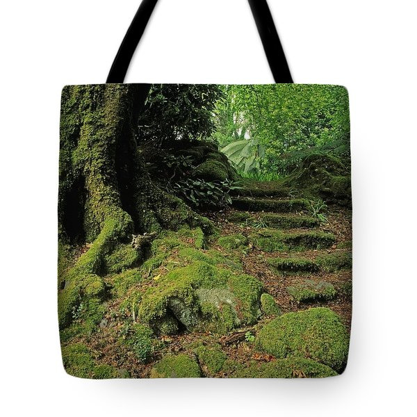 Steps In The Wild Garden, Galnleam Tote Bag by The Irish Image Collection