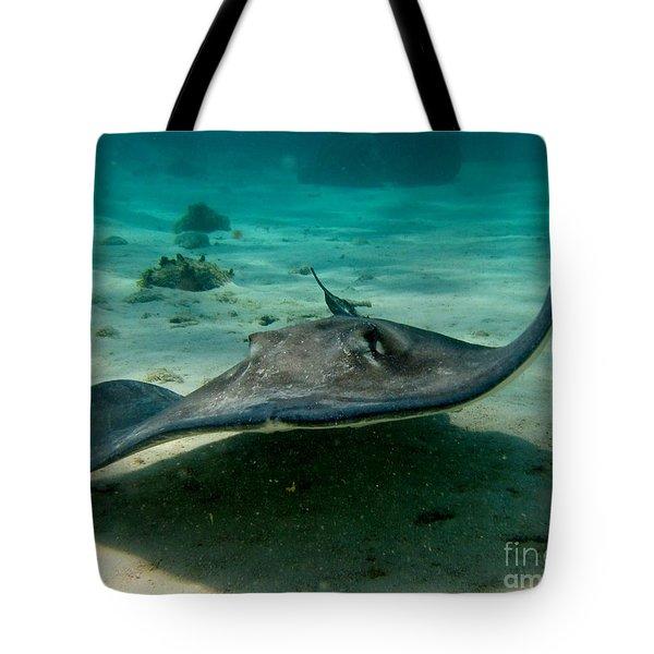 Stingray Approaching Tote Bag by John Malone
