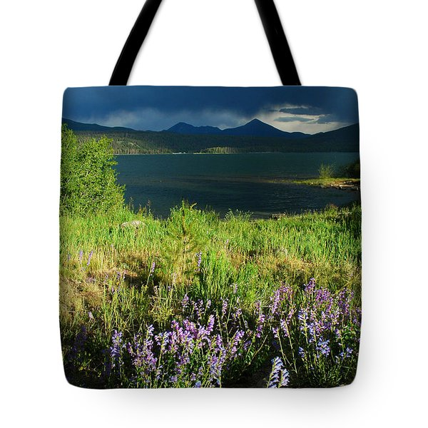 Storm in Dillon Tote Bag by Lynn Bauer