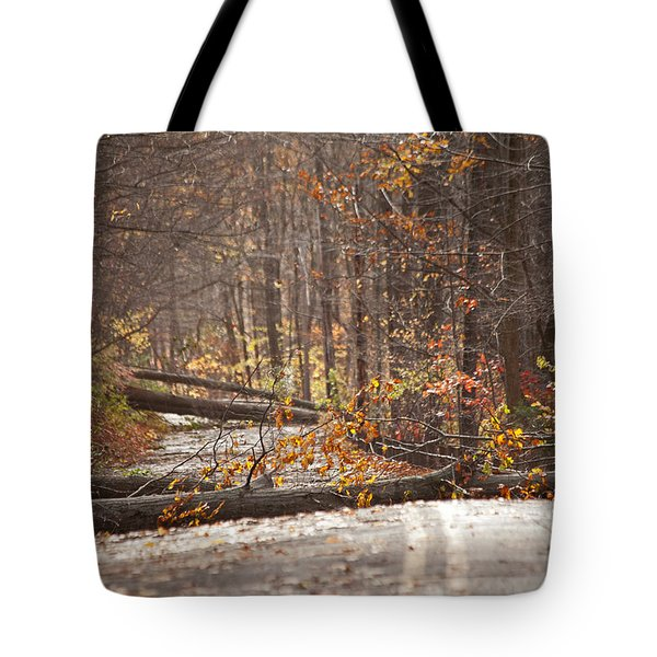 Stormy Autumn Tote Bag by Karol Livote