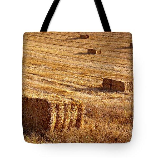 Straw Field Tote Bag by Carlos Caetano