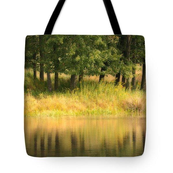 Summer Reflections Tote Bag by Karol Livote