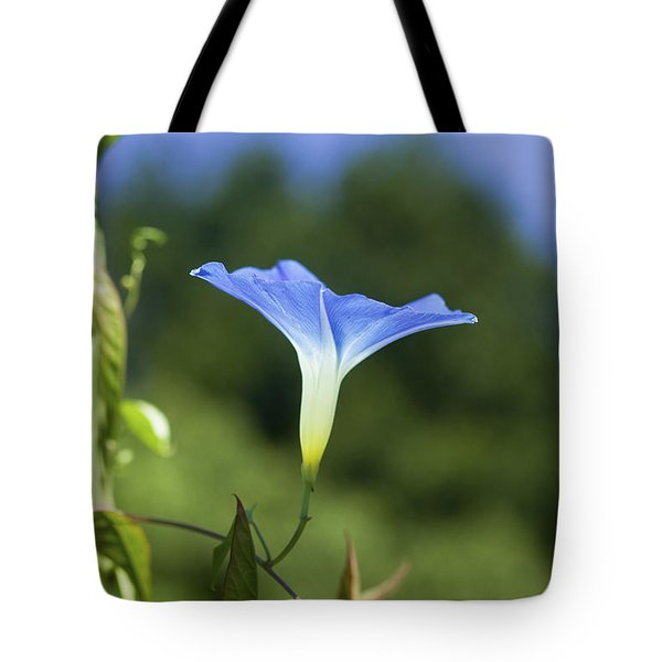 Sun On Morning Glory Tote Bag by Rich Franco