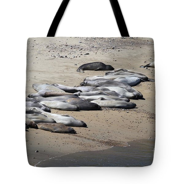 Sunbathing Elephant Seals Along A Beach At Point Reyes California . 7D16063 Tote Bag by Wingsdomain Art and Photography