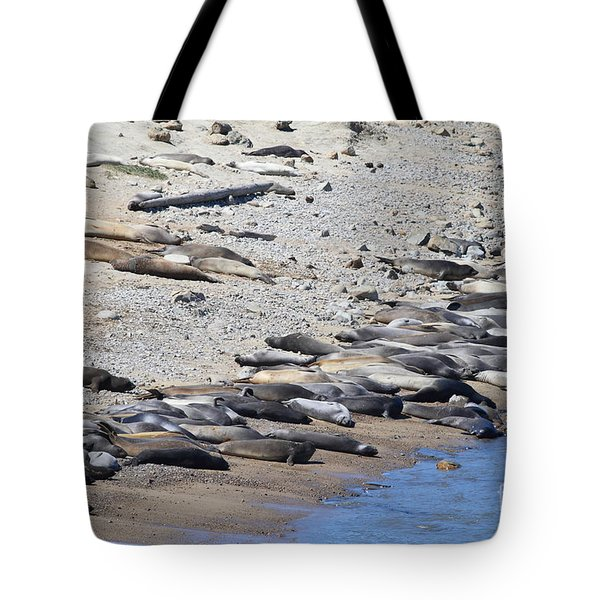 Sunbathing Elephant Seals Along A Beach At Point Reyes California . 7d16065 Tote Bag by Wingsdomain Art and Photography