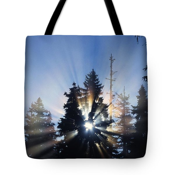 Sunburst Through Silhouetted Pine Trees Tote Bag by Natural Selection Craig Tuttle