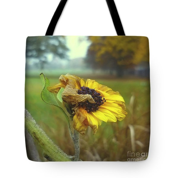 Sunflower At Summers End Tote Bag by Jeff Breiman
