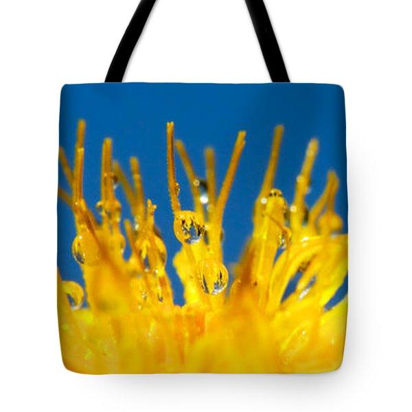 Sunrise Tote Bag by Lisa Knechtel