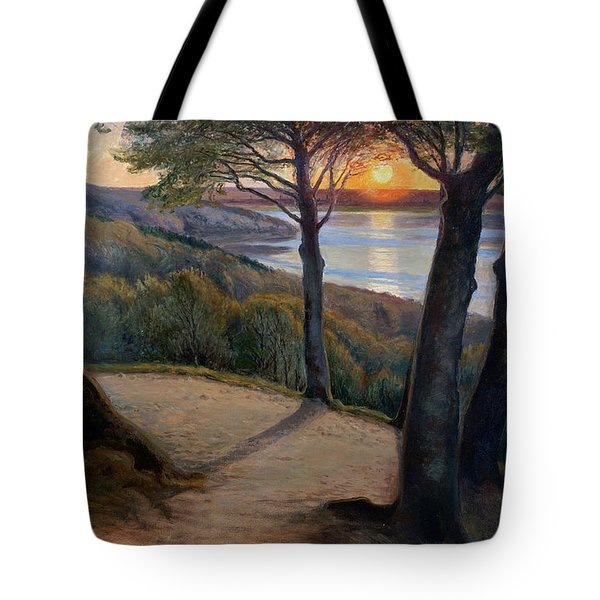 Sunset Tote Bag by Hans Agersnap