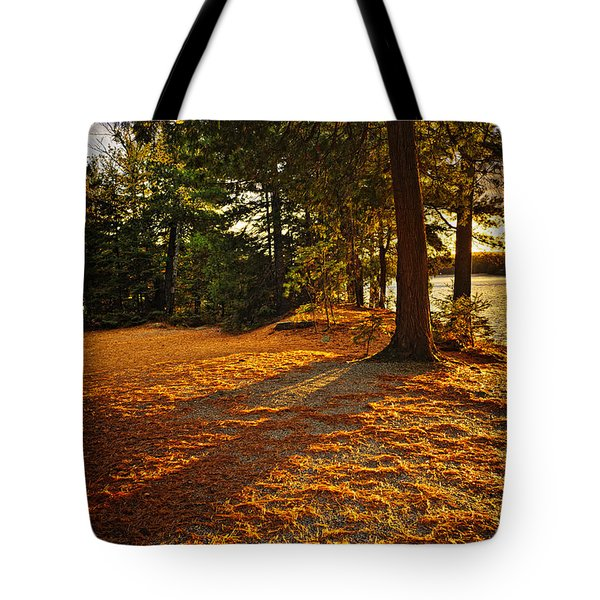 Sunset In Woods At Lake Shore Tote Bag by Elena Elisseeva