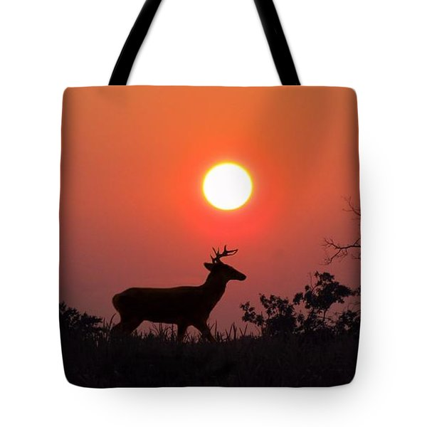 Sunset Silhouette Tote Bag by David Dehner