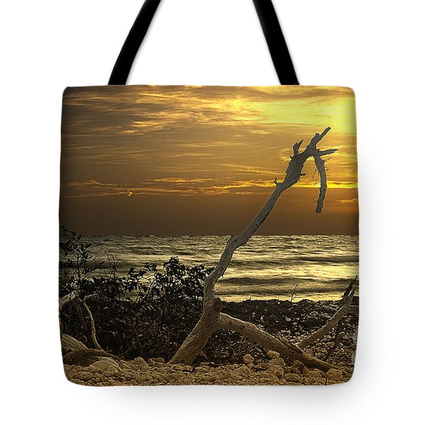 Sunset West II Tote Bag by Bruce Bain