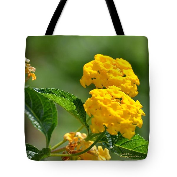 Sunshine Gold Tote Bag by Maria Urso