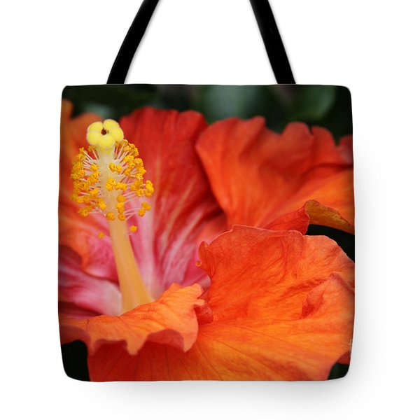 Surrender Tote Bag by Sharon Mau