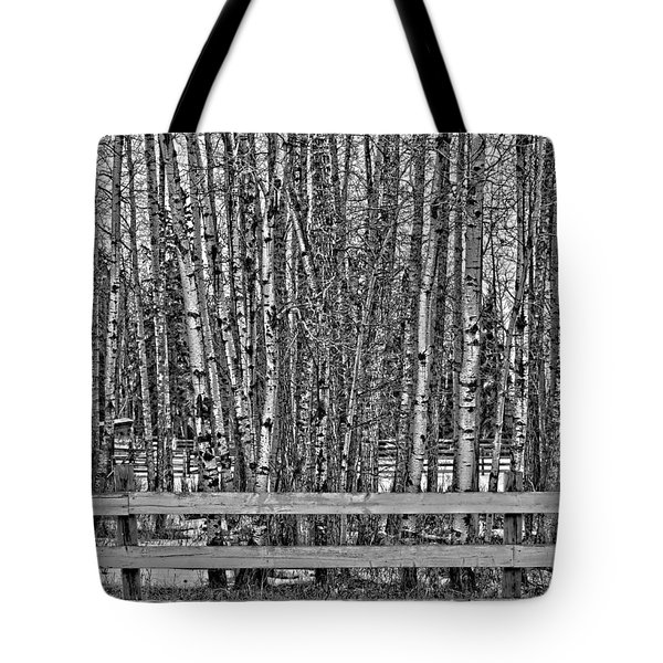 Susys Ranch  Tote Bag by Jerry Cordeiro