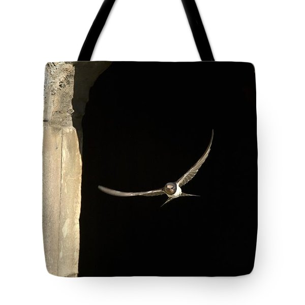Swallow In Flight Tote Bag by John Short