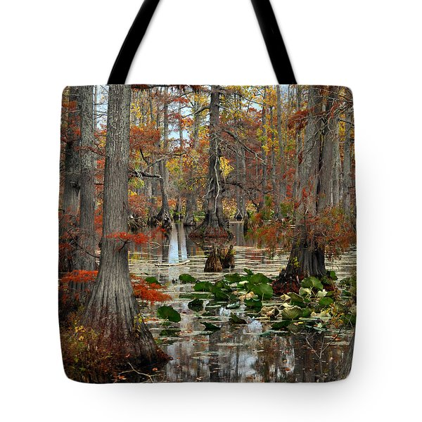 Swamp In Fall Tote Bag by Marty Koch