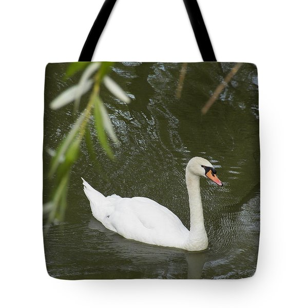 Swan Enjoying A Swim Tote Bag by Corinne Elizabeth Cowherd