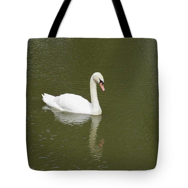 Swan Looking At Reflection Tote Bag by Corinne Elizabeth Cowherd