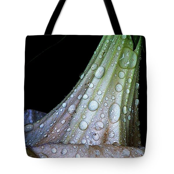 Sweet And Rainy Tote Bag by Chris Berry