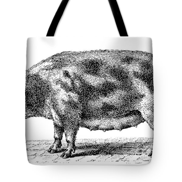 Swine Tote Bag by Granger