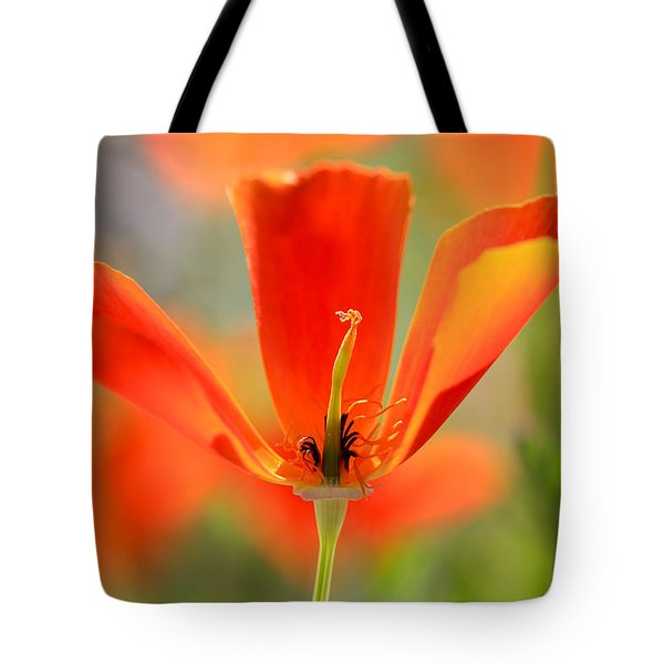 Take A Look Inside Tote Bag by Heidi Smith