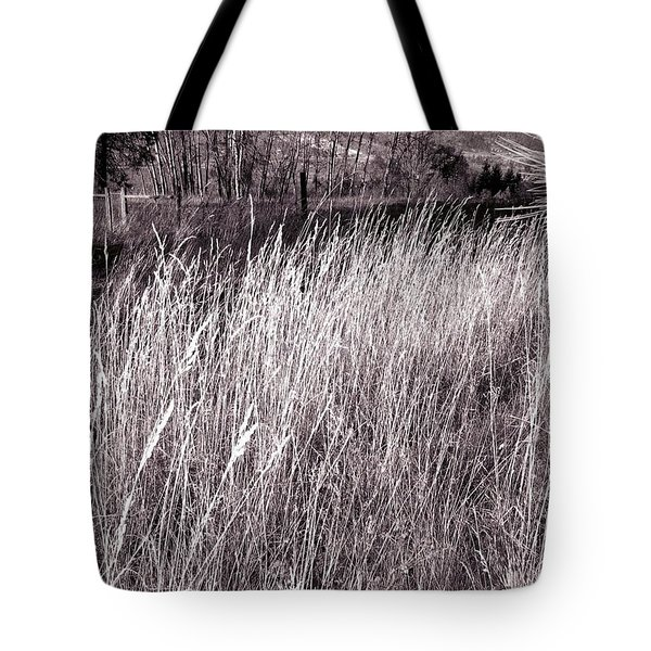 Tall Grasses Tote Bag by Will Borden