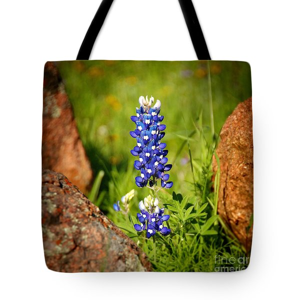 Texas Bluebonnet Tote Bag by Jon Holiday