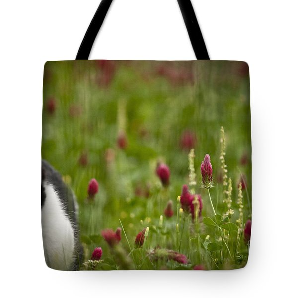 The Clover Field Tote Bag by Kim Henderson